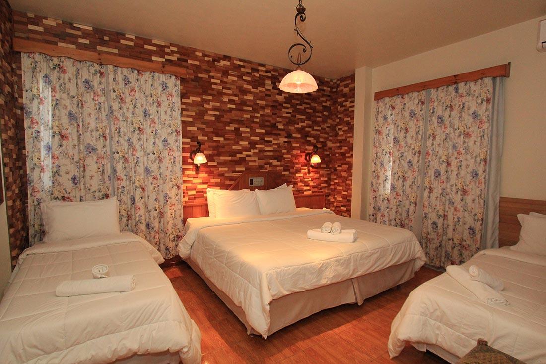 apartamento_com_vista_da_cidade_treze_tilias_park_hotel